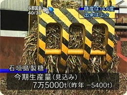 石垣島製糖