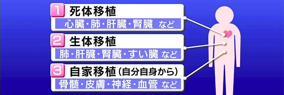 10-10-13-repo003.jpg
