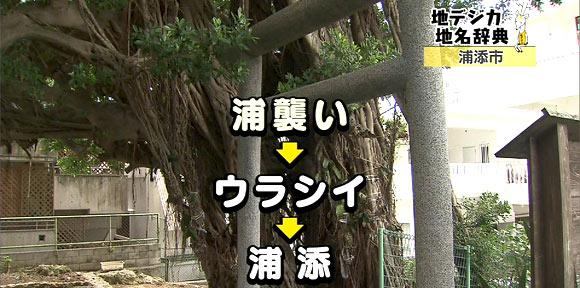 11-02-09-shika.jpg