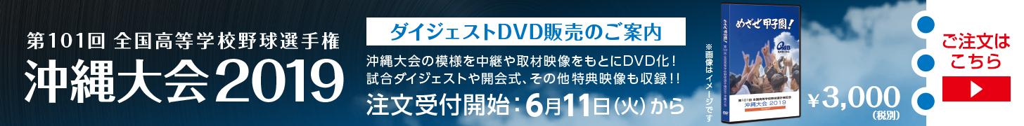 第101回全国高等学校野球選手権記念沖縄大会 ダイジェストDVD