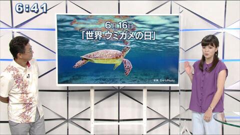 気象予報士テルさんのおもしろ自然教室#9「世界 ウミガメの日」