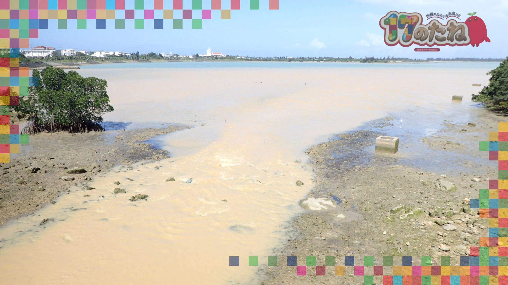 #24「環境調査」