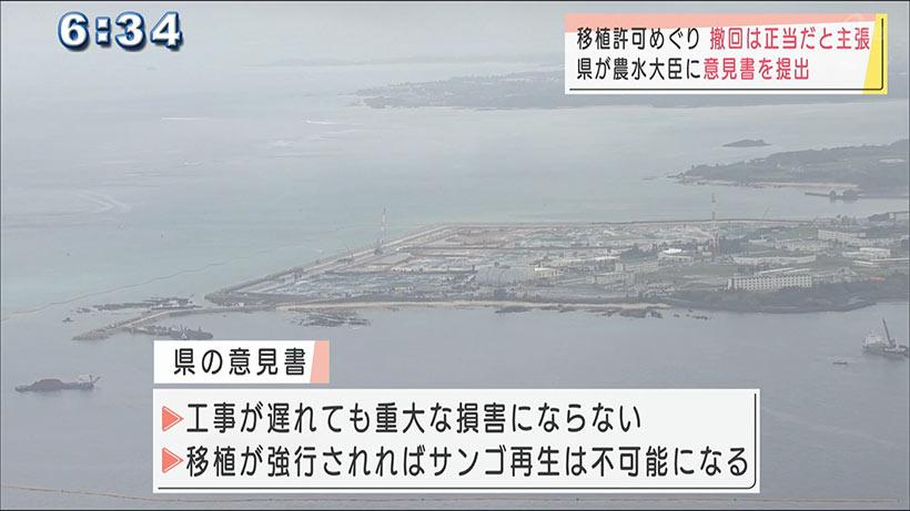 サンゴ移植許可の撤回 県が意見書で正当性を主張