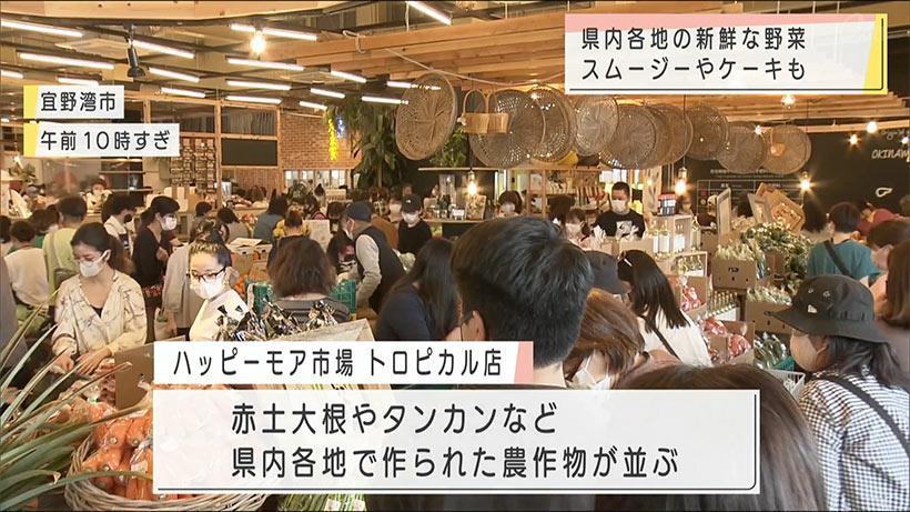 県内各地の新鮮な野菜 宜野湾市に直売所
