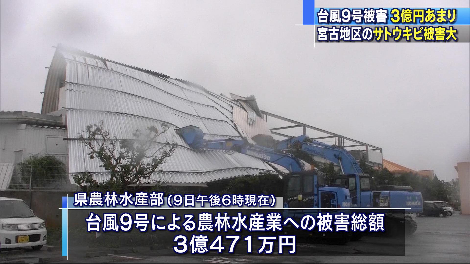 台風9号による農作物への被害額約3億円