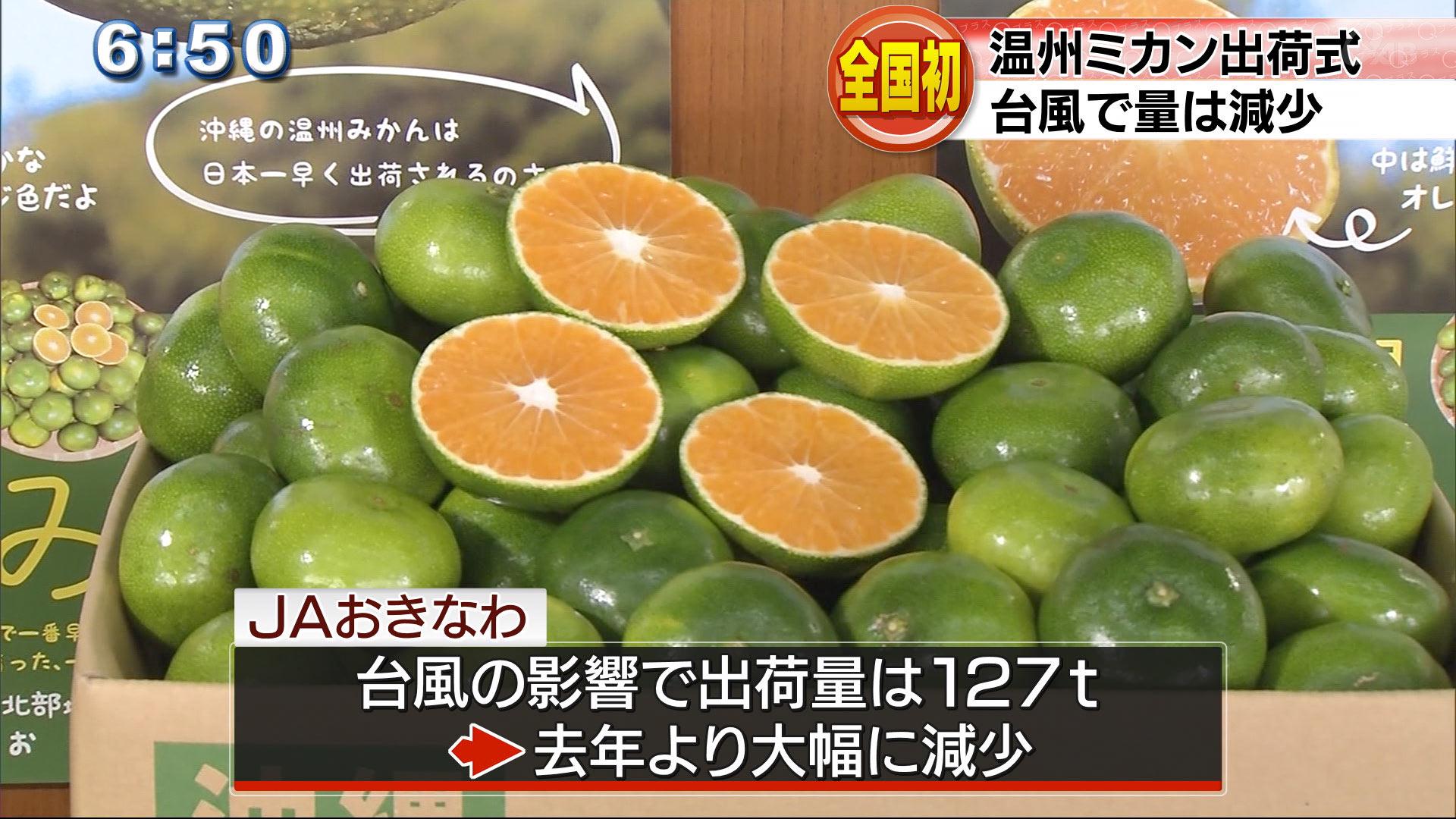 温州ミカン初出荷式 露地栽培では日本一早く