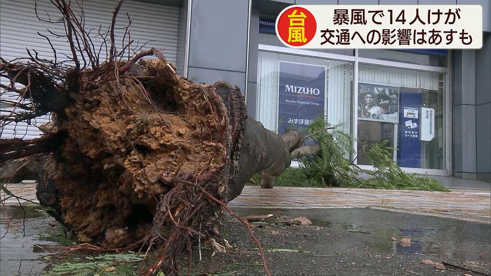 台風17号 これまでに19人けが