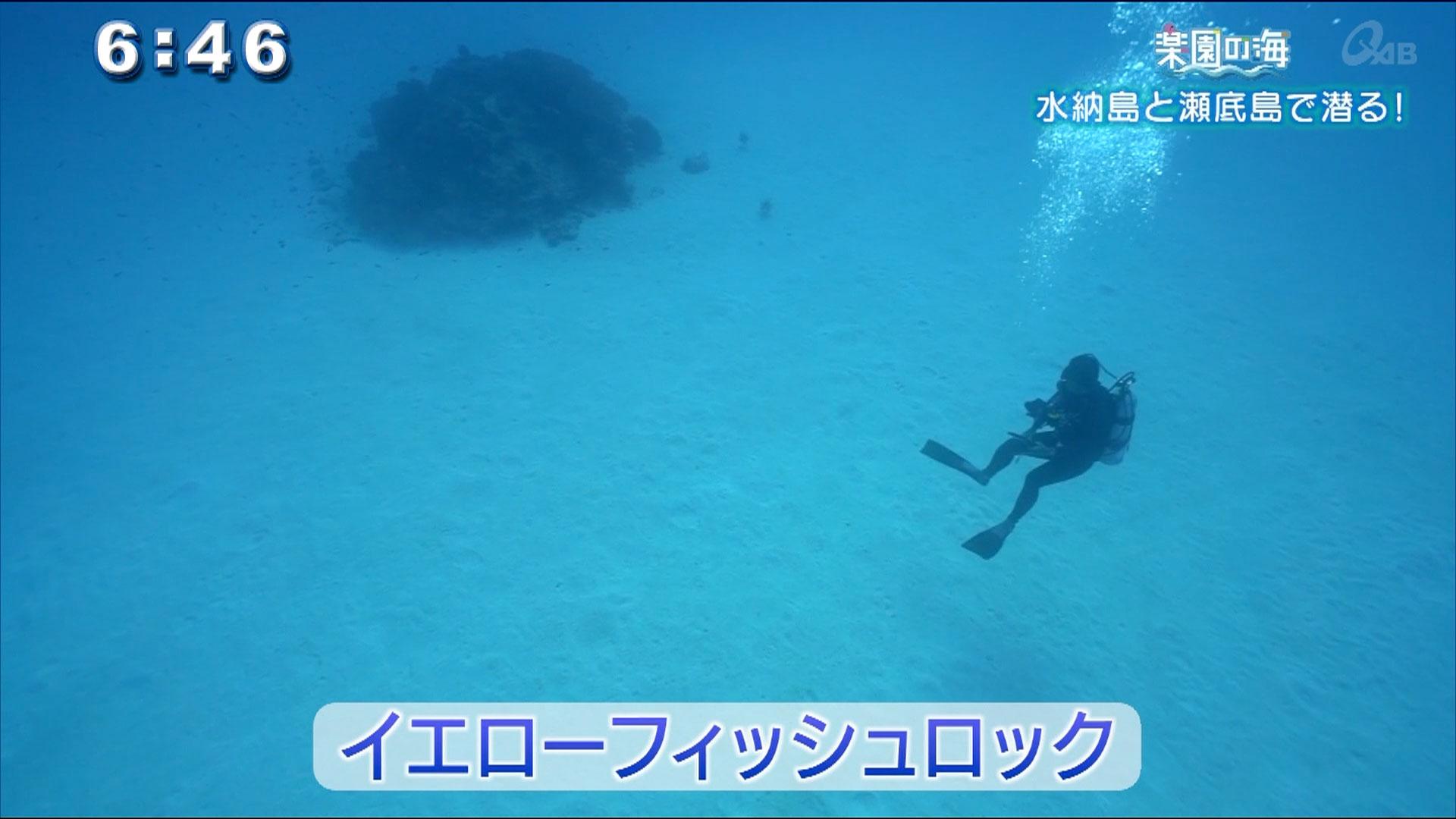 楽園の海 ~水納島と瀬底島で潜る!~