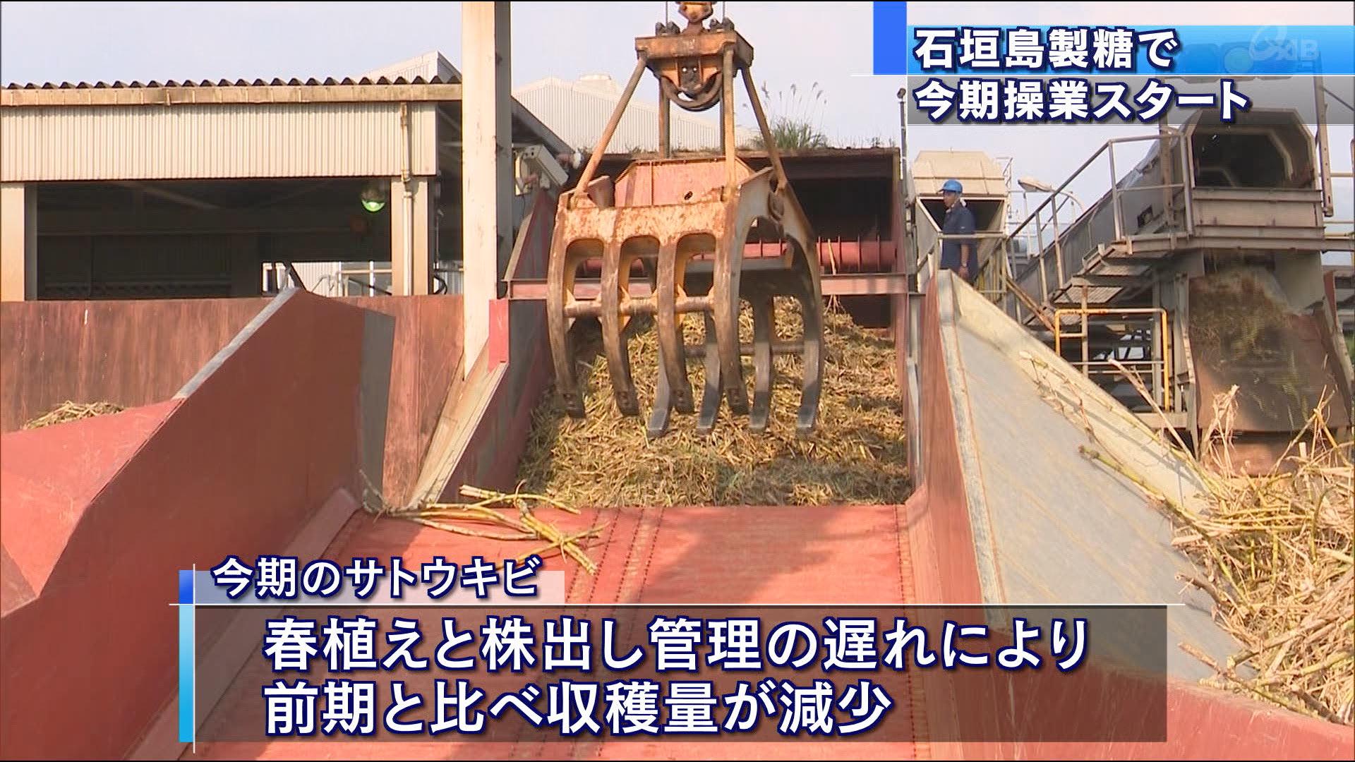 石垣島の製糖工場操業開始