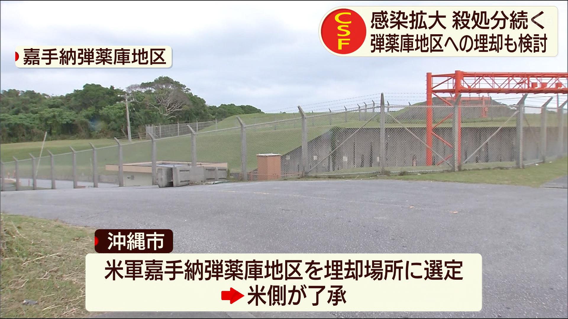 豚コレラ感染拡大 嘉手納弾薬庫への埋却も検討