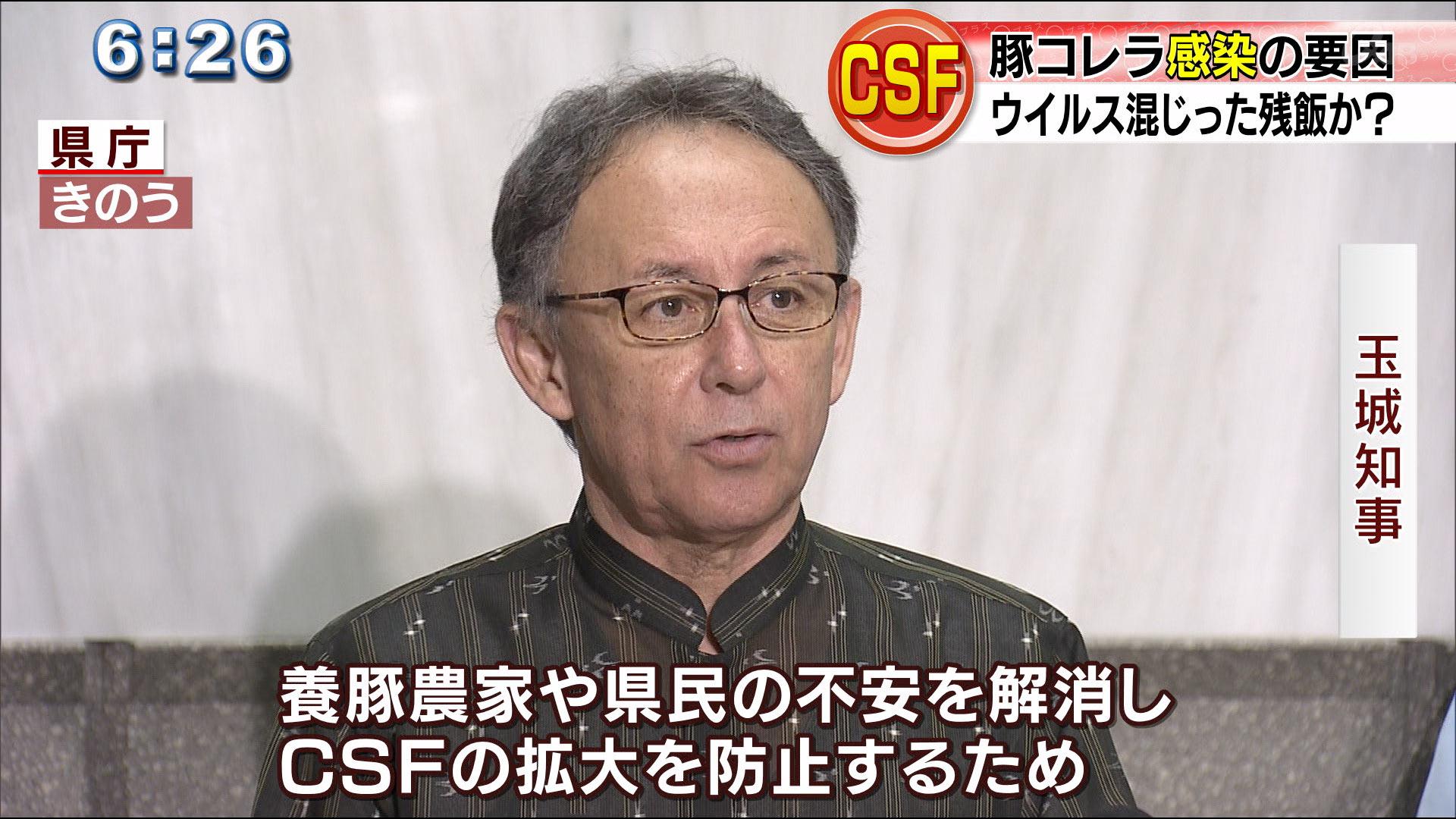 豚コレラなぜ沖縄で発生? 侵入経路の解明に会議