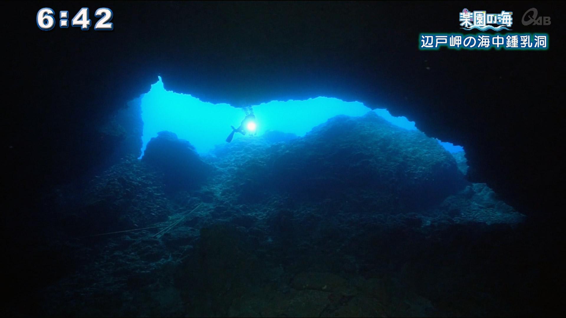 楽園の海 辺戸岬の海中鍾乳洞
