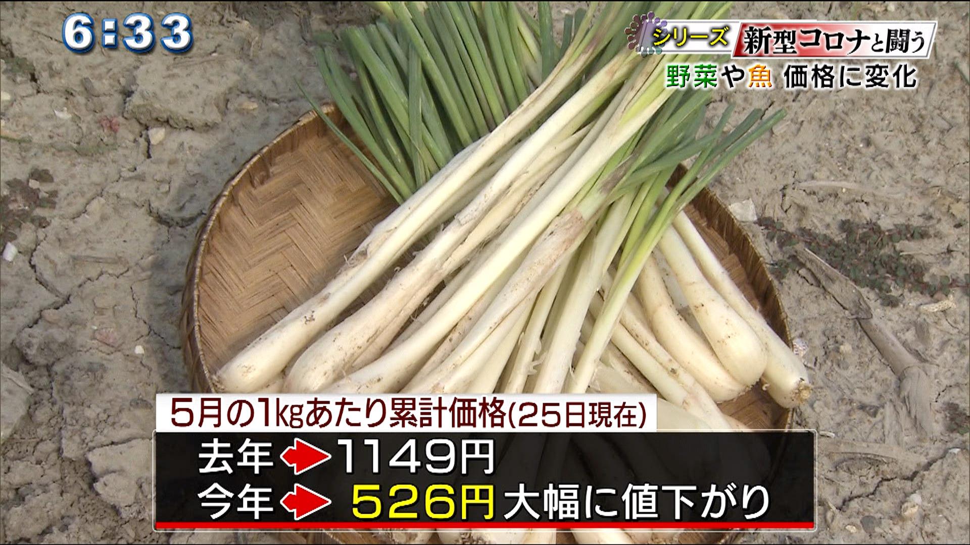 シリーズ「新型コロナと戦う」 野菜や魚 価格に変化