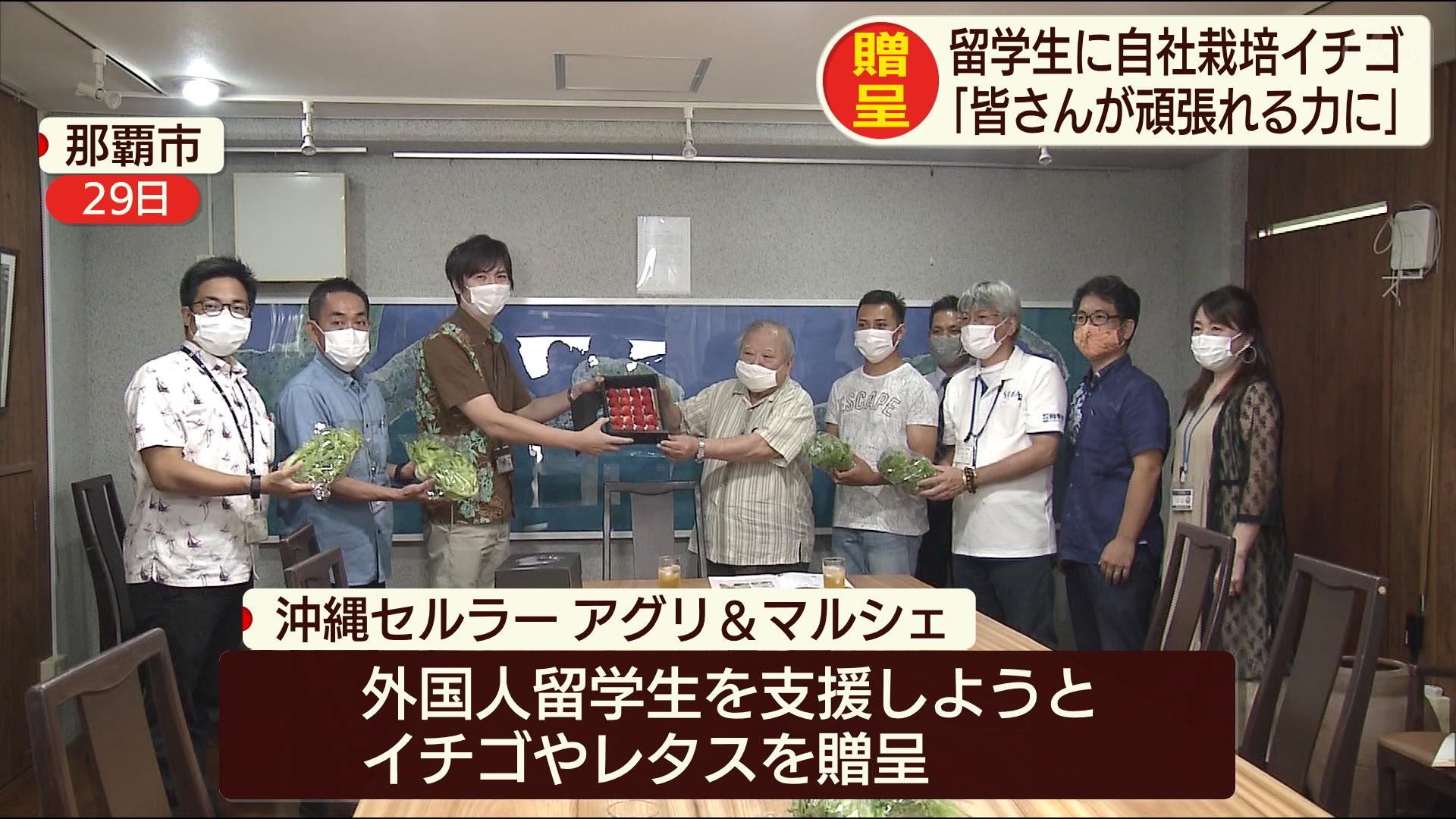 留学生に自社栽培のイチゴを贈呈