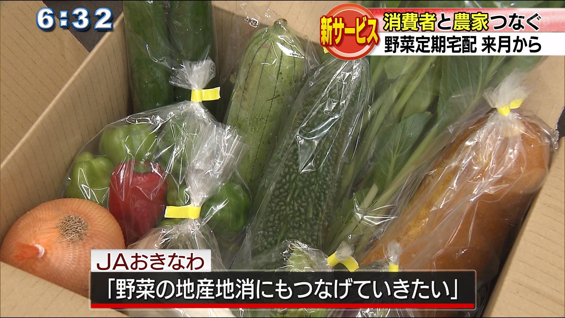 野菜定期宅配サービス来月から開始