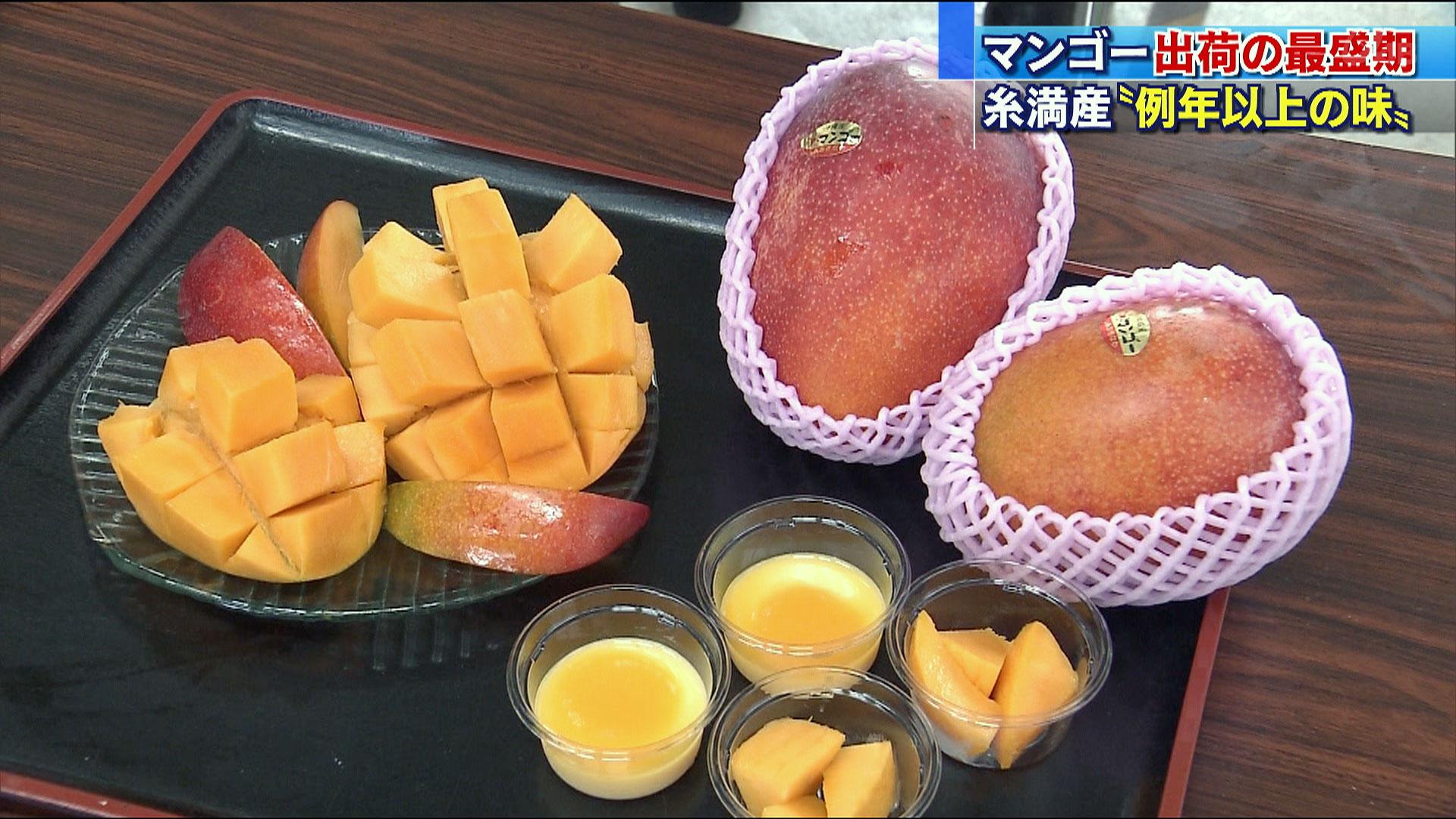 糸満産マンゴーのPRセレモニー