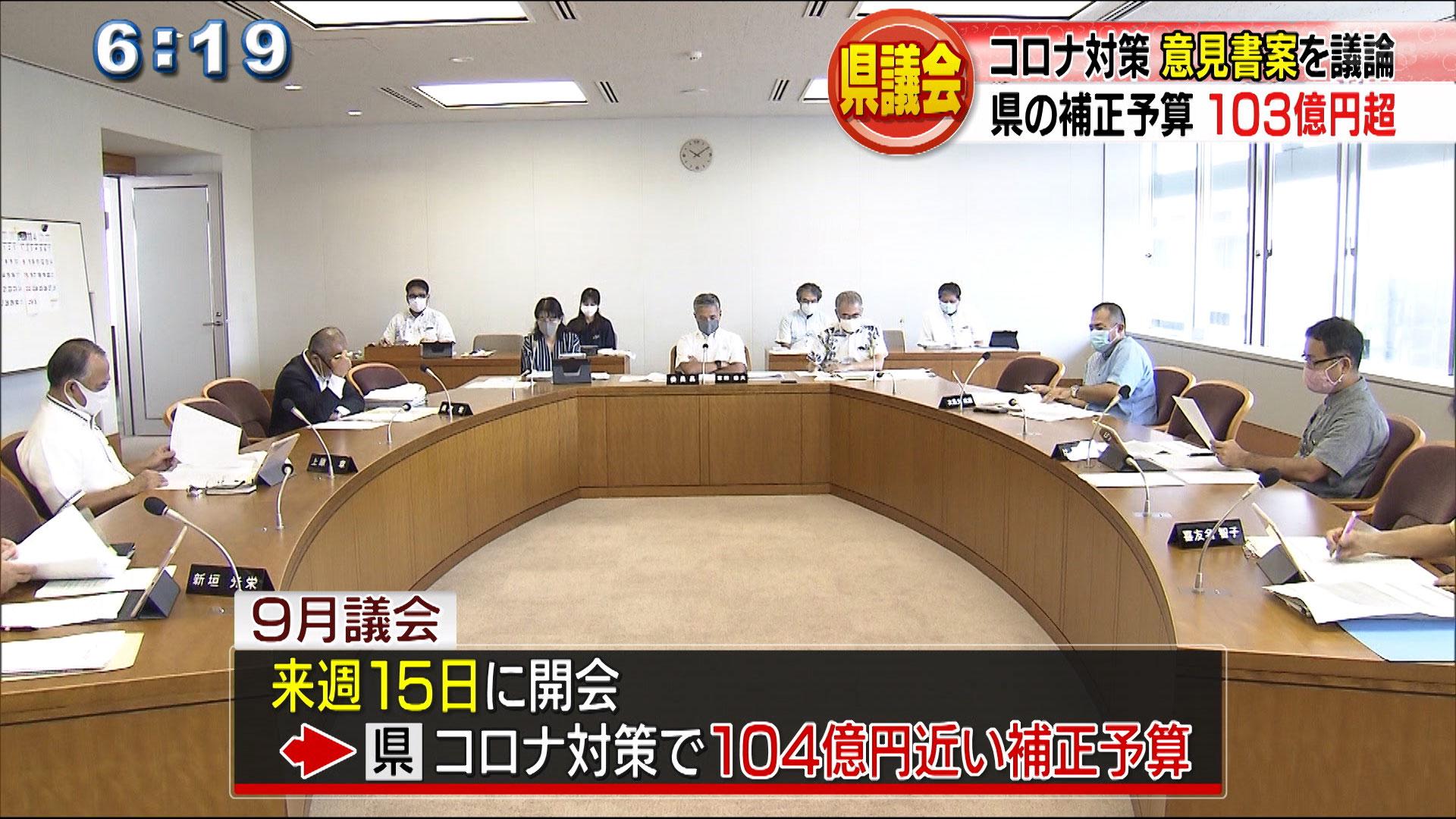 県議会 新型コロナ小委員会
