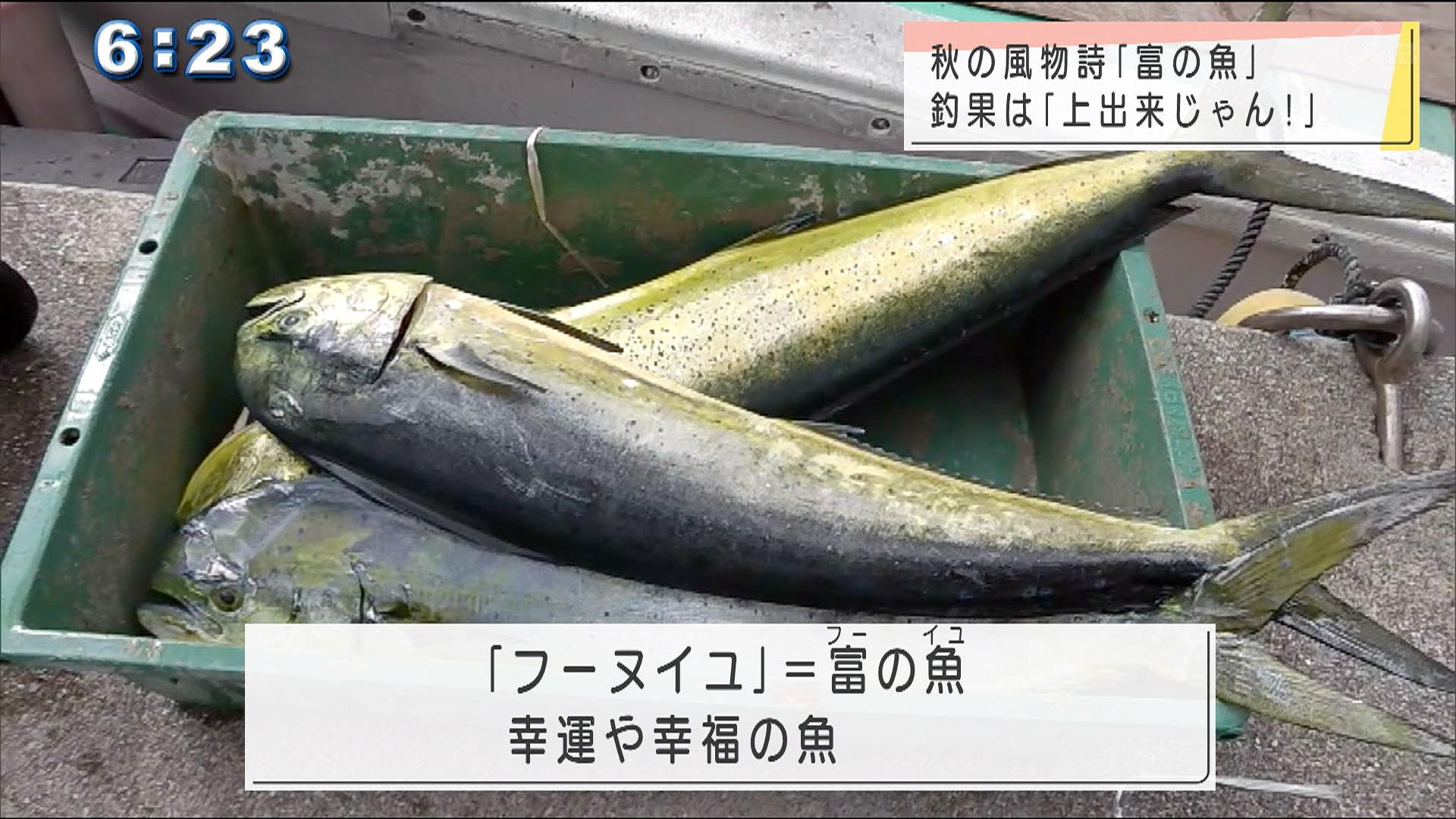 フーヌイユの漁始まる