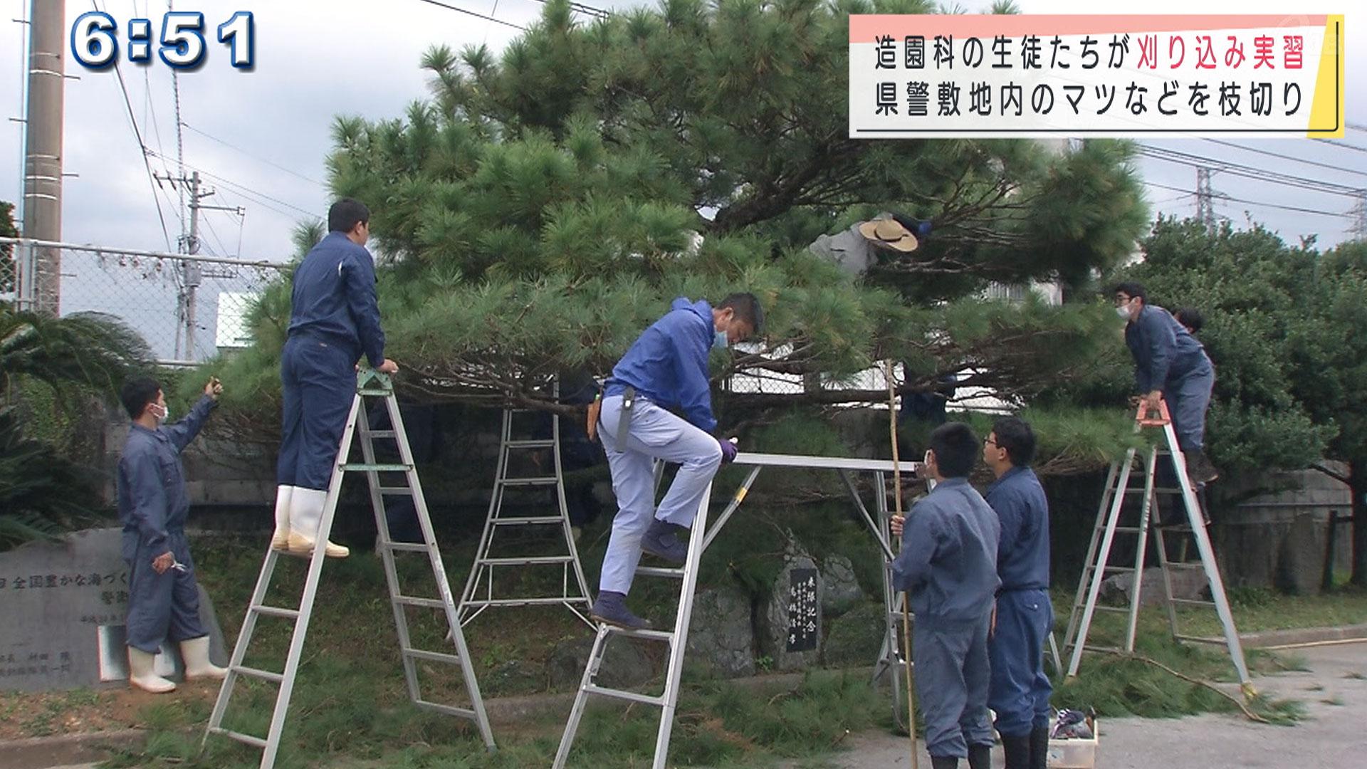 高校生が機動隊敷地内の植栽を刈り込み実習