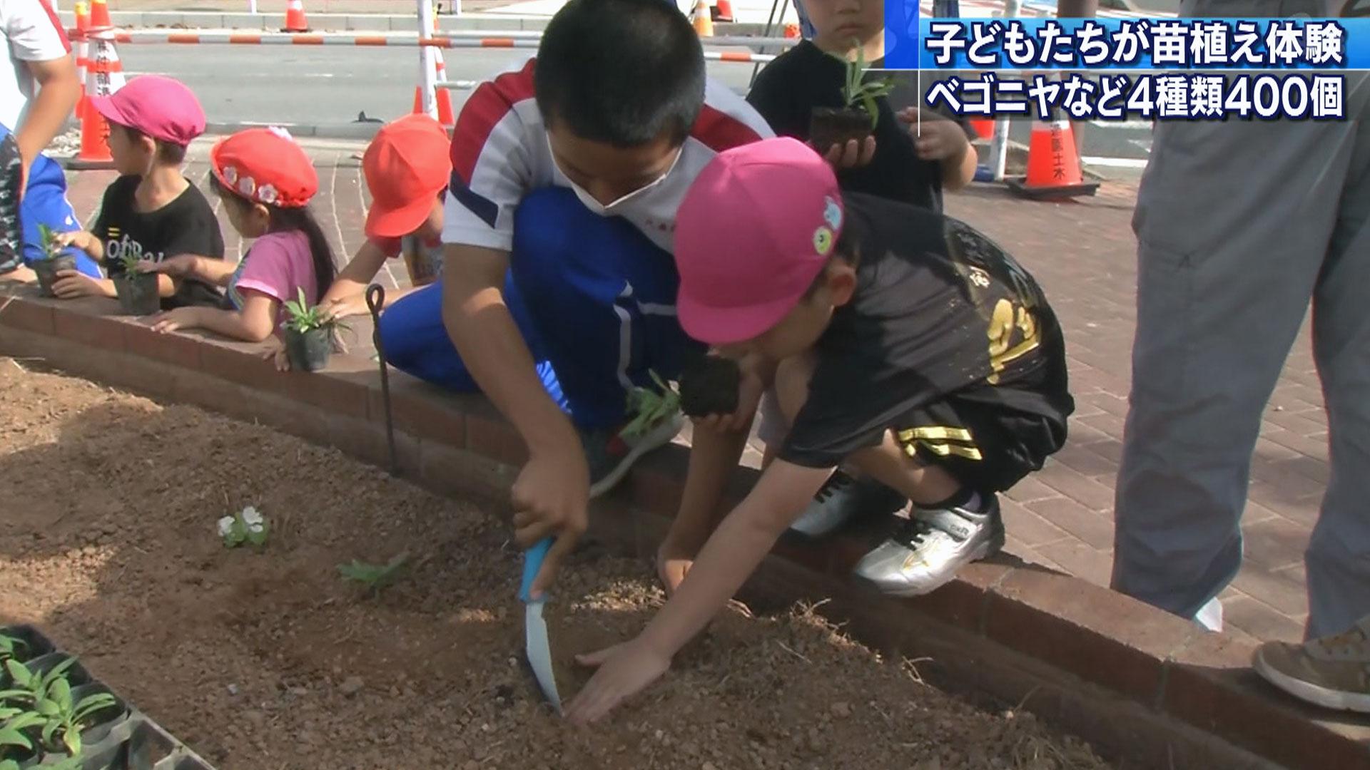 子どもたちが花の苗植え体験