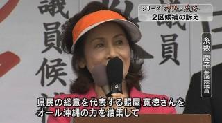 シリーズ沖縄の岐路 衆院選2区 候補者の訴え