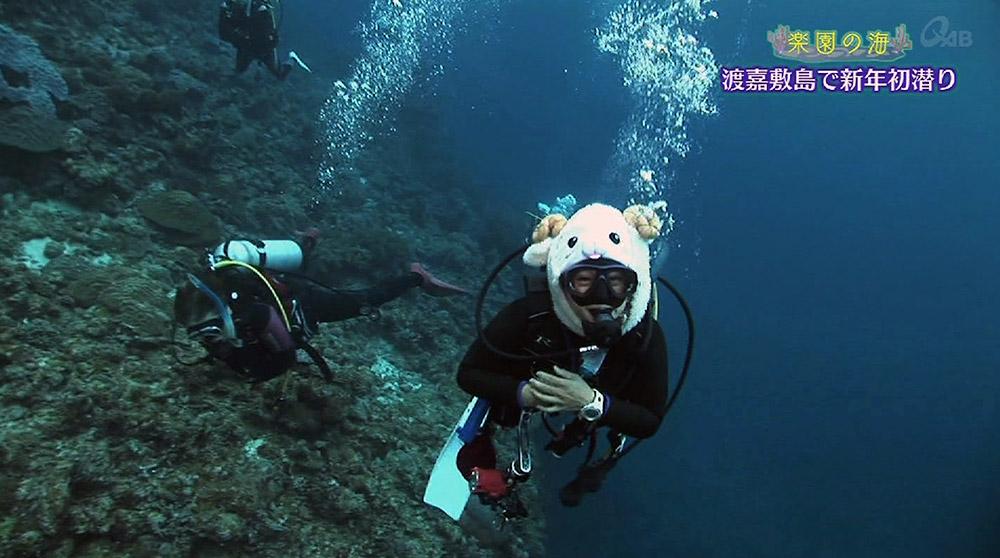 楽園の海 新年恒例 お正月の初潜り2015