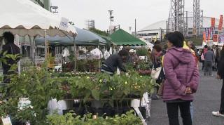花と食のフェスティバル