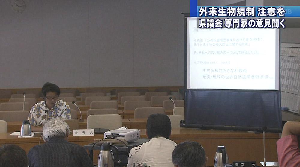 土砂条例特別委で参考人質疑