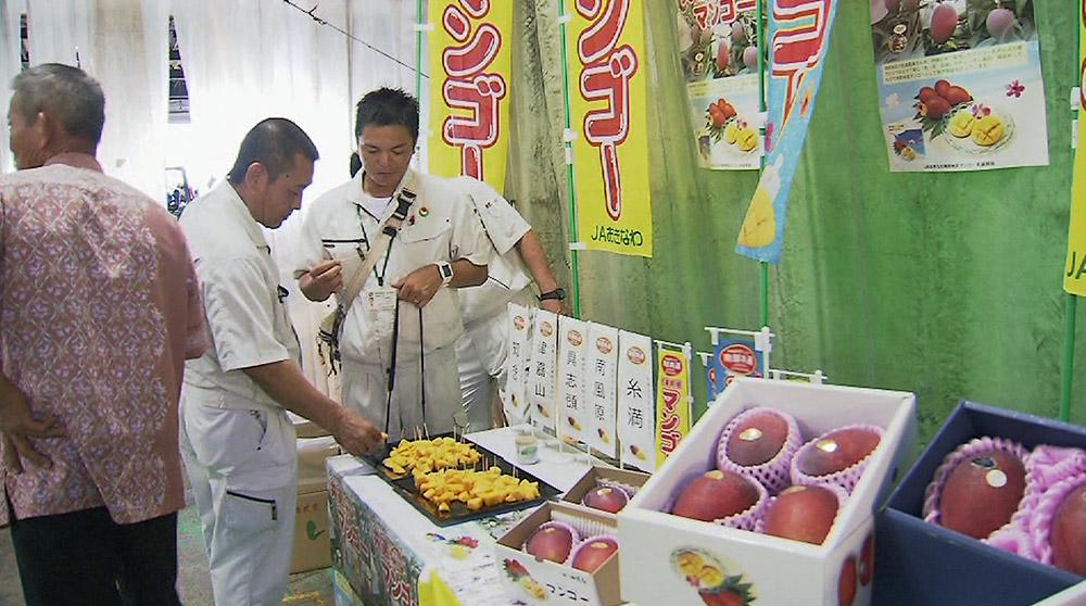 今が旬 沖縄産マンゴー販売会