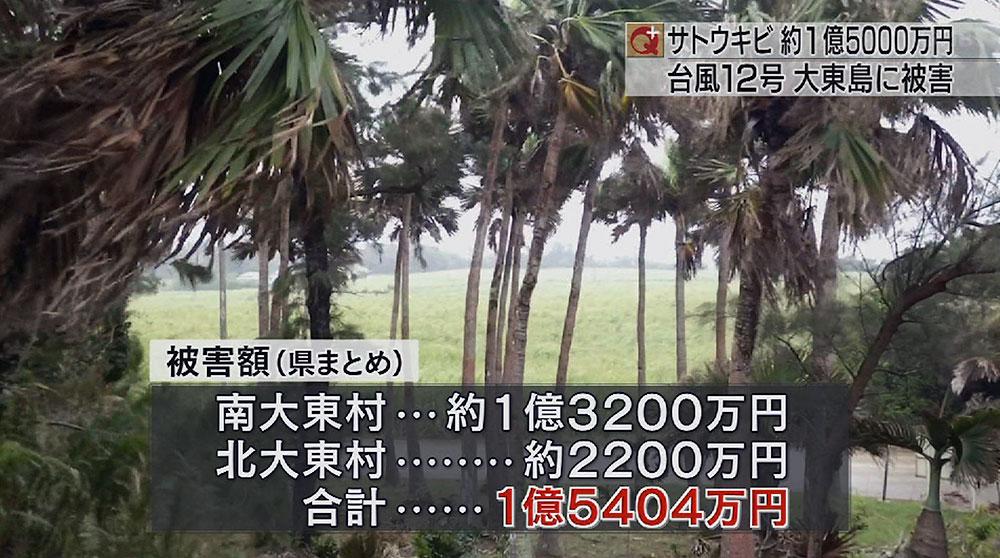 台風12号の被害は1億5000万円