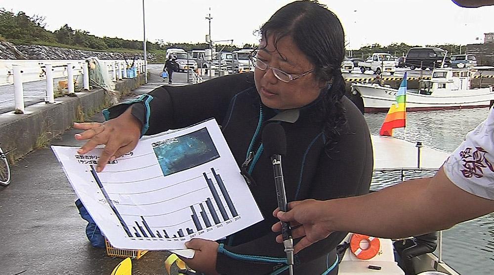 辺野古沖で自然保護団体が「リーフチェック」