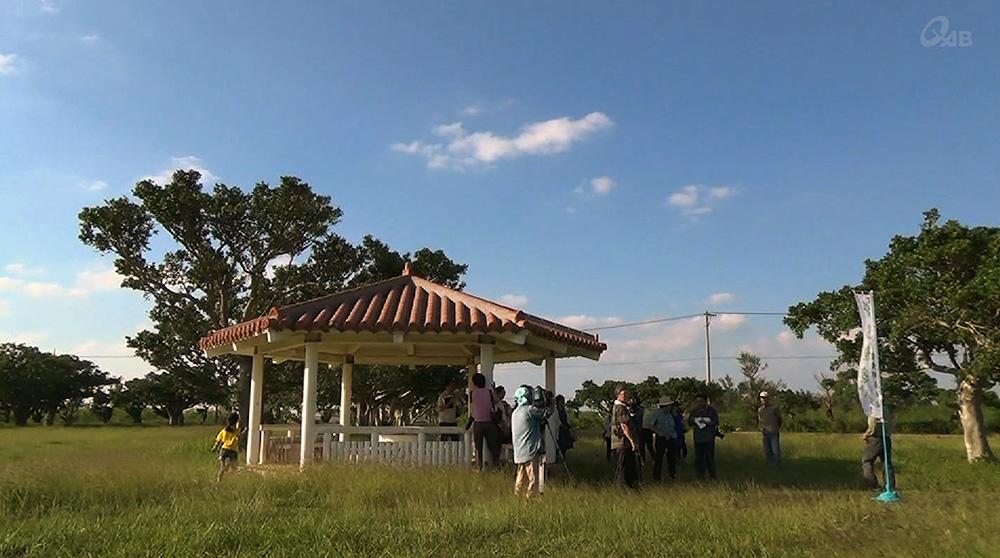 伊良部島で「サシバ観察会」