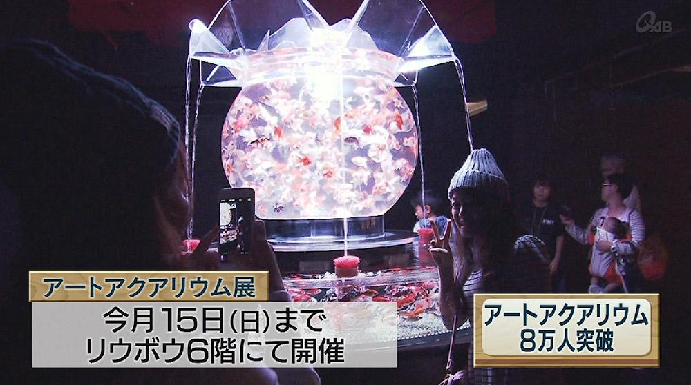 アートアクアリウム展 8万人突破