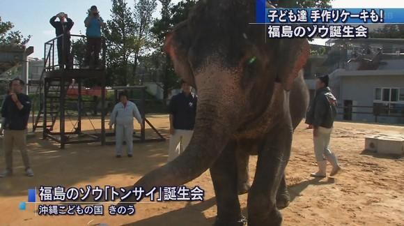 福島のゾウ・トンサイ誕生会