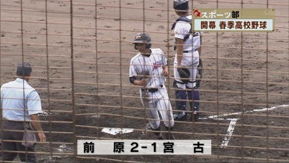 Q+スポーツ部野球にかける男女の情熱 02