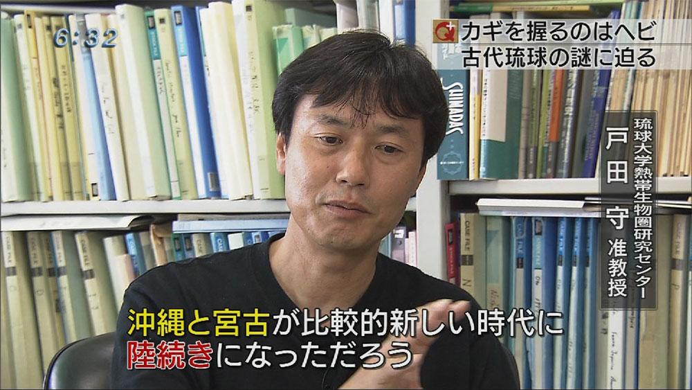 沖縄と宮古・八重山は陸続きだった?琉大研究者発見01