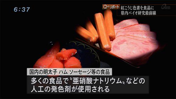 Q+リポート 紅こうじ色素が食品産業変える?!