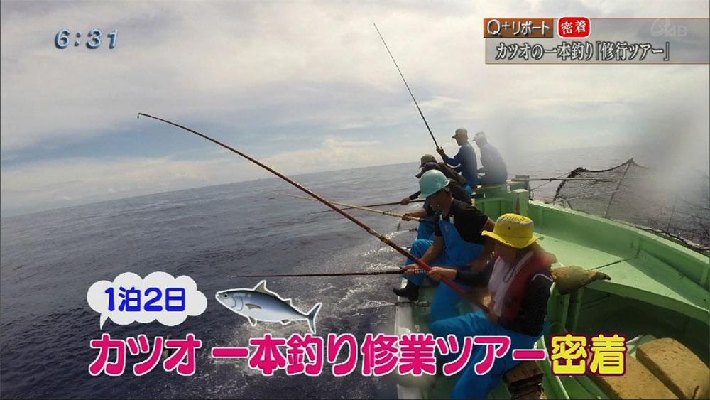 Q+リポート カツオの一本釣り「修行ツアー」