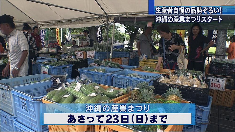 第40回沖縄の産業まつり開幕