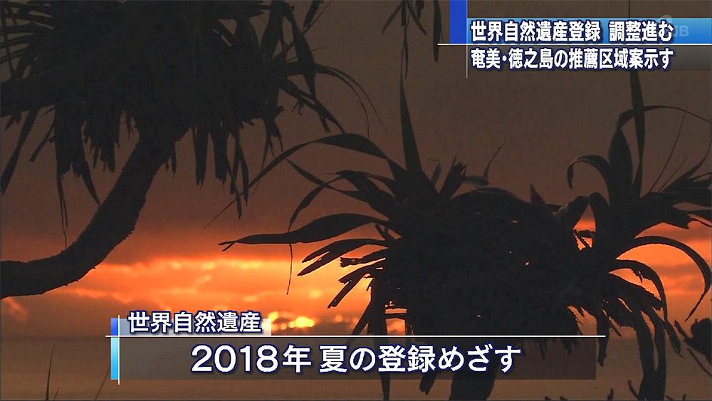 世界自然遺産 奄美・徳之島で区域案