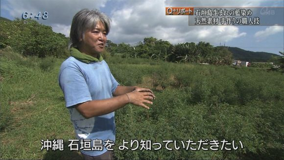 Q+リポート 「島で生まれる藍」島藍農園