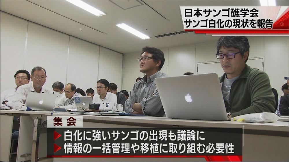 日本サンゴ礁学会 白化で情報交換