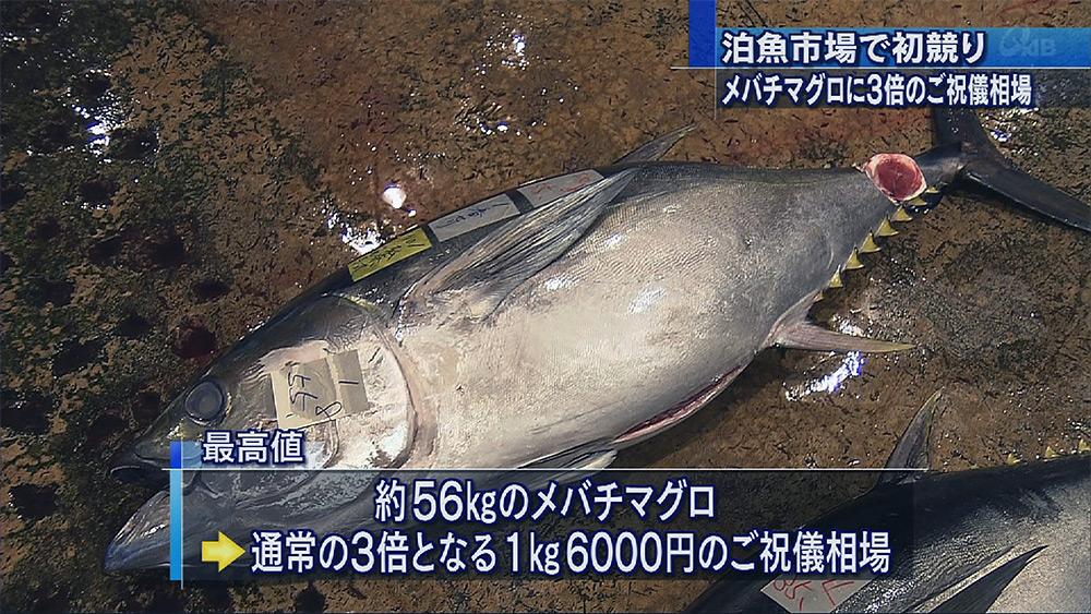 泊魚市場で初競り