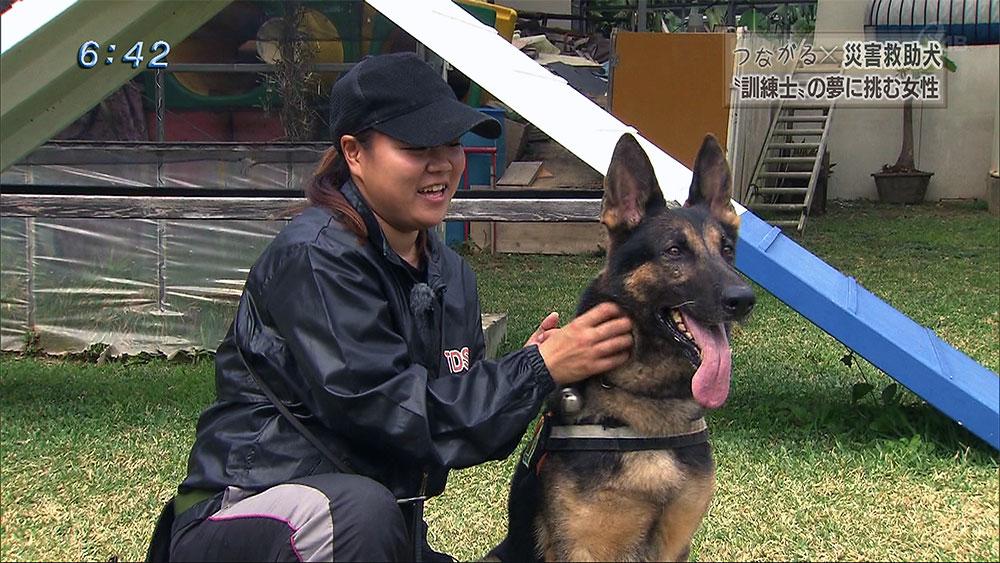 """つながる × 災害救助犬 """"訓練士""""の夢に挑む女性"""