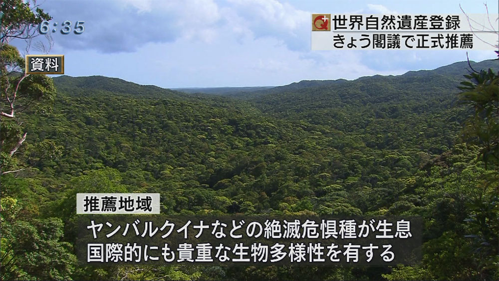 沖縄と奄美など世界遺産に正式推薦