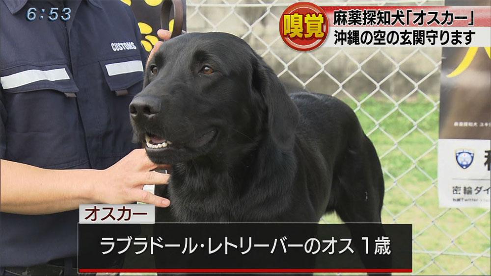 麻薬探知犬「オスカー」お披露目