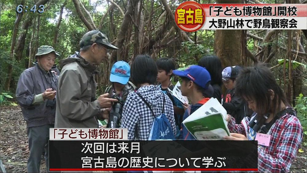 宮古島「子ども博物館」で野鳥観察会