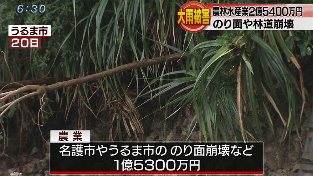大雨による農林水産被害2億5400万円