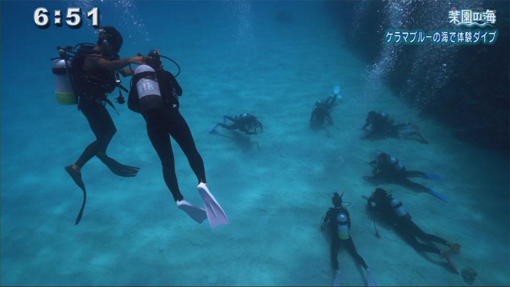 楽園の海 渡嘉敷島で体験ダイビング
