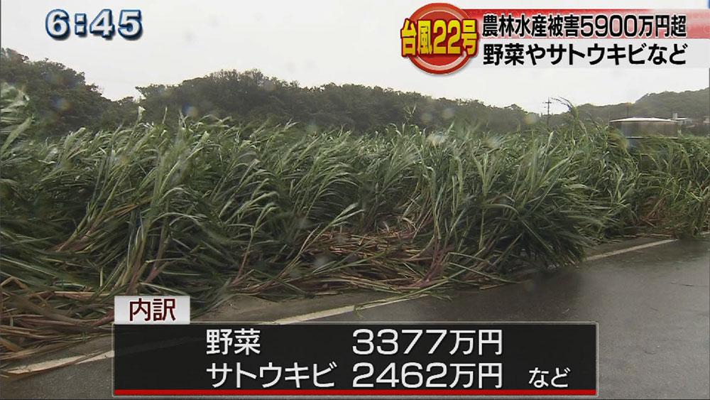 台風22号農林水産被害5900万円超